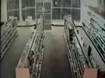 薬局に車で突っ込む泥棒