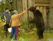 熊に襲われる女性
