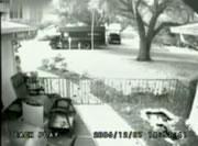 UPS 小包を投げる配達人