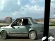 牛を後部座席に乗せて走る車