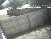 空き巣を追い払う犬
