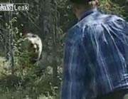 山でヒグマに遭遇した男性