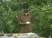 レンガを食べる男