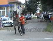 馬の後ろからシッポを触るのは危険