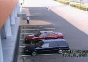 駐車場で人身事故