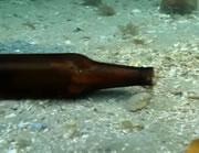 ビール瓶の中から出てくるタコ