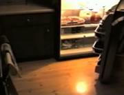 夜中にピザを盗み食いするワンちゃん