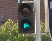エロい青信号