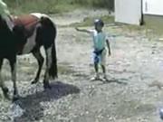 馬の後ろからちょっかいを出すのは危険