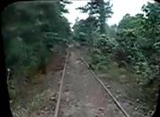 凄すぎる!密林を走る機関車