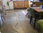 1000 sticks