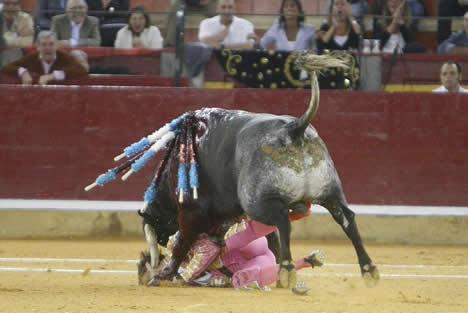 スペイン 牛の角が闘牛士の顔面貫通