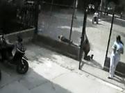 窓ガラスに激突するバイク