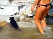 泳ぐネコとTバックお姉さん