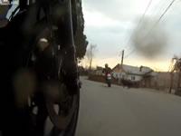 犬を当て逃げするバイク