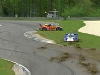 芝生に突っ込み動けなくなったレースカー