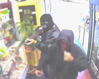 チワワにビビる強盗二人