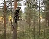 木からジャンプ!アクシデント